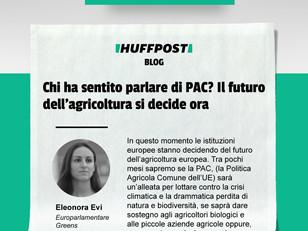 PAC: IL FUTURO DELL'AGRICOLTURA SI DECIDE ORA