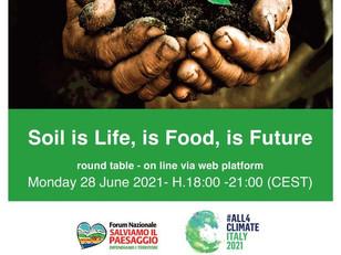 WEBINAR: SOIL IS LIFE, IS FOOD, IS FUTURE