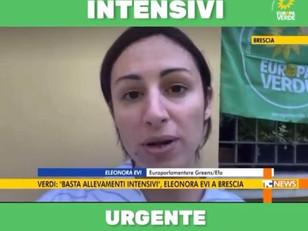 LA NOSTRA BATTAGLIA CONTRO GLI ALLEVAMENTI INTENSIVI OGGI IN TV