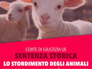SENTENZA STORICA: LO STORDIMENTO DEGLI ANIMALI PRIMA DELLA MACELLAZIONE NON VIOLA LIBERTÀ RELIGIOSA