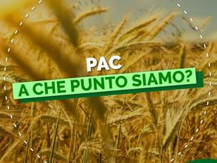 PAC, A CHE PUNTO SIAMO?