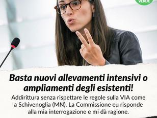PORCILAIA SCHIVENOGLIA: LA COMMISSIONE UE CI DA' RAGIONE, AMPLIAMENTO VA SOTTOPOSTO A VIA