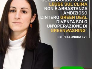 ANSA - EVI: LEGGE SUL CLIMA, IL GREEN DEAL SOLO GREENWASHING?