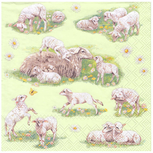 Napkins N960 Lunch size 33x33cm Lambs