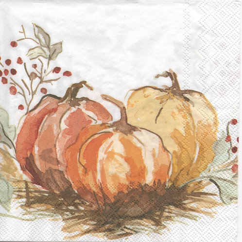 Napkins N847 Lunch size 33x33cm