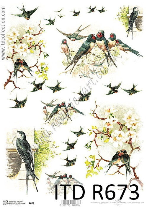 ITD A4 Rice Paper For Decoupage R673 Vintage Spring Birds
