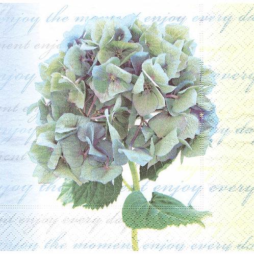 Napkins N1097 Lunch size 33x33cm Flowers blue hydrangea