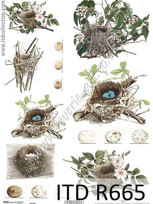 A4 rice paper R665 Vintage Spring birds