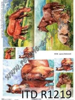 A4 rice paper R1219 Horses
