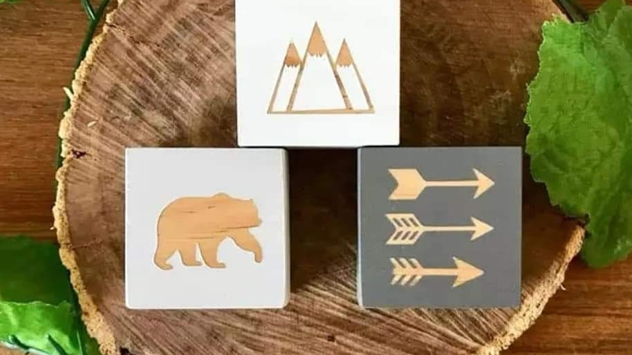 Room decor blocks. Bear