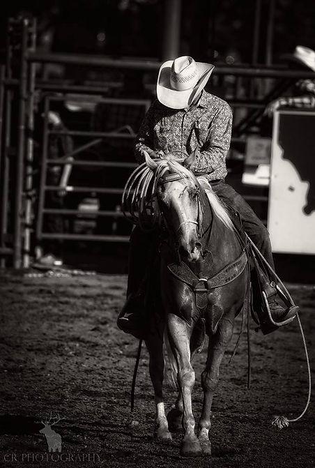 Justin Brewer - Rodea.jpg