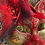 Thumbnail: Cardinal Gatto Mask