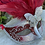 Thumbnail: Feathered Mask in Red/Silver