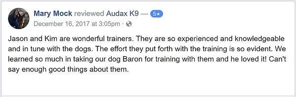 Jason and Kim are wonderful trainers. They are so experienced and knowledgeable and in tune with the dogs. The effort they put forth with the training is so evident. We learned so much in taking our dog Baron for training with them and he loved it! Can't say enough good things about them.