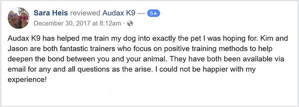 Audax K9 has helped me train my dog into exactly the pet I was hoping for. Kim and Jason are both fantastic trainers who focus on positive training methods to help deepen the bond between you and your animal. They have both been available via email for any and all questions as the arise. I could not be happier with my experience!