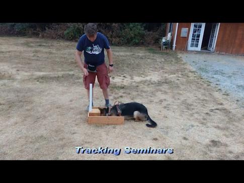 Tracking Seminars