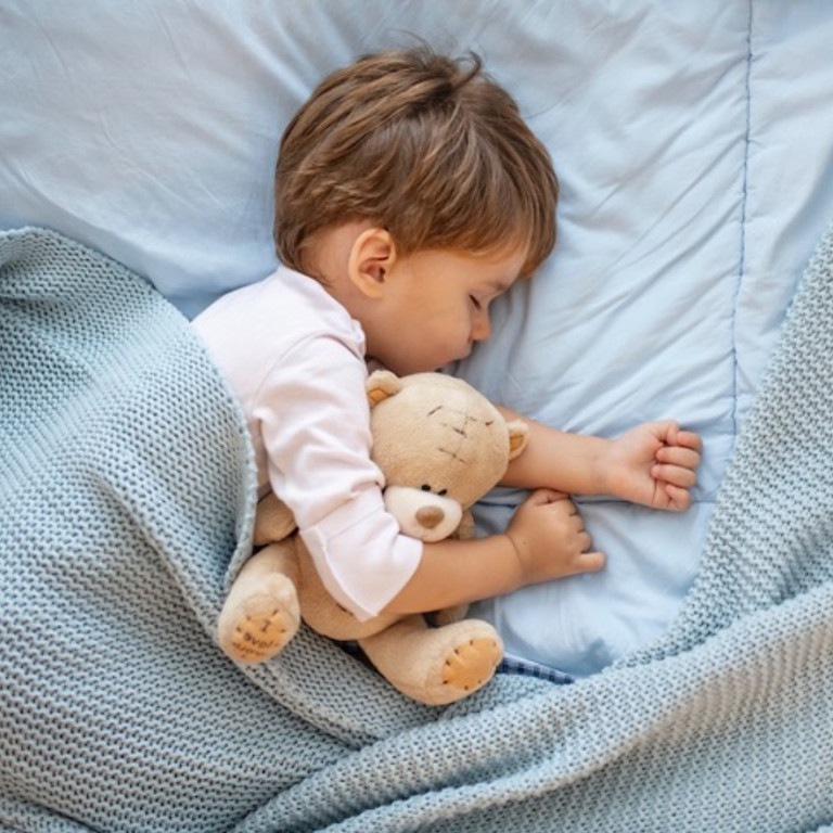 Toddler Sleep Training: Staying in Bed!
