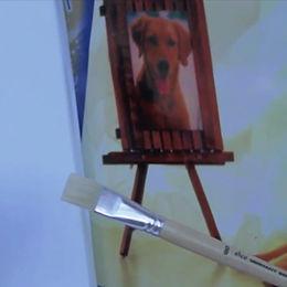 Unerhörtes Hundegebet +  Die 2 ½. Dimension