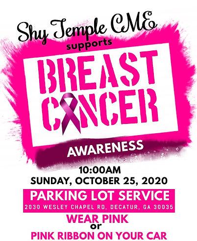 Shy Temple Breast Cancer Awareness Month