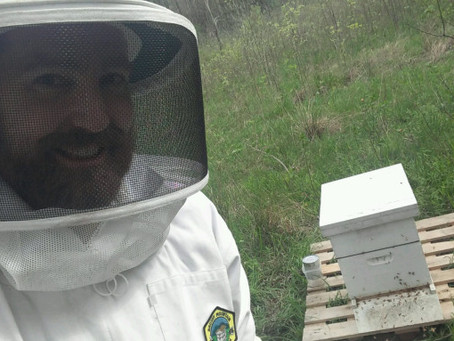 Darwin's Allergy Test- Keeping Bees at the HAH