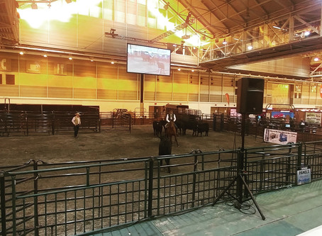 CattleCon- Like ComiCon With Manure