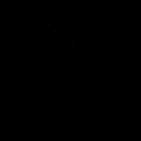 Логотип Natural Curls ЗВ без фона.png
