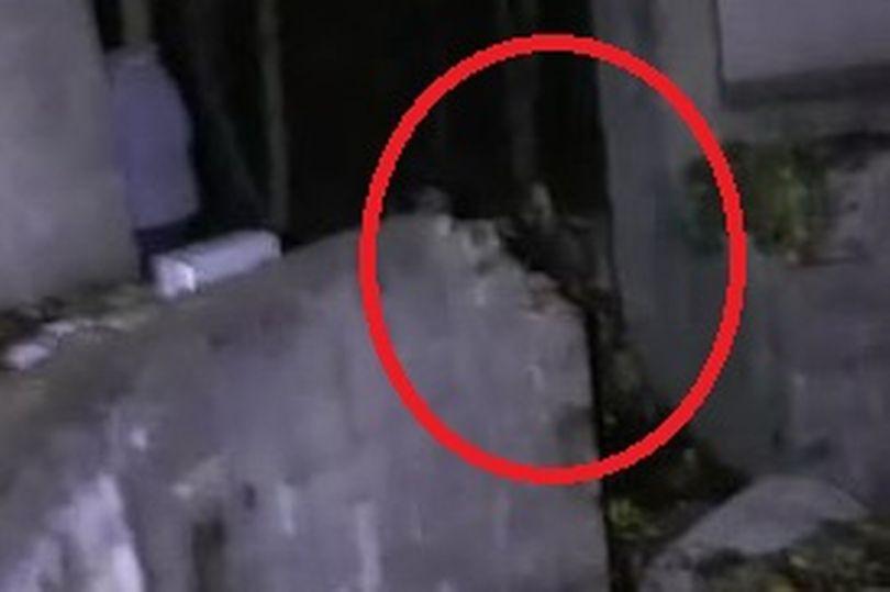 Ghost on camera in former WW2 gun site