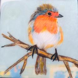 Bird 6 x6