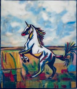 Unicorn 8 x 10