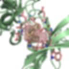 ftsite_logo.png
