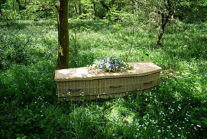 Willow-Coffin-in-woodland-2.jpg