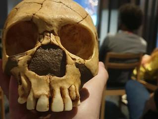 Growing Up Neanderthal