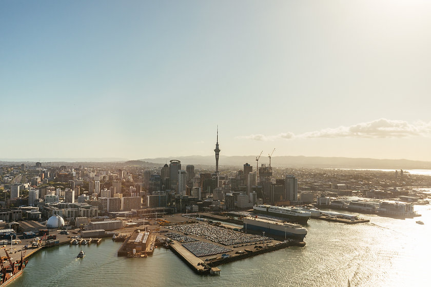 Professional Building Management in Auckland