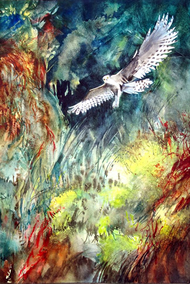 Vol blanc dans la forêt