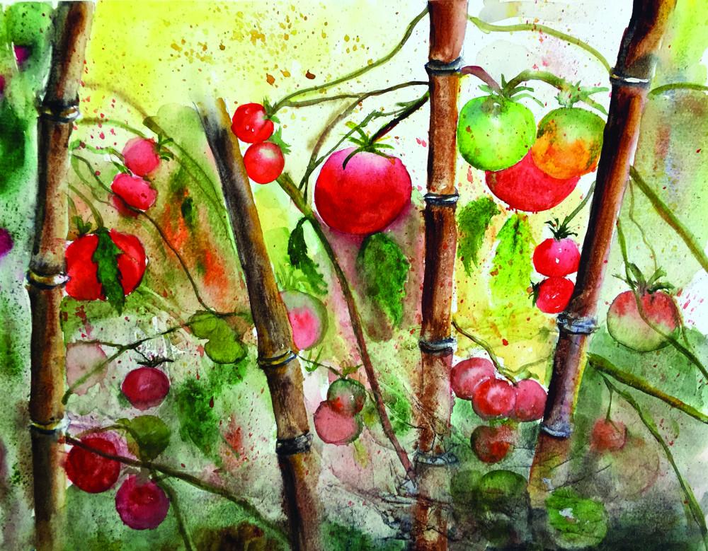 Les tomates