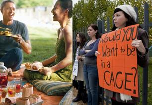 יכול להיות שהפיקניק חשוב יותר מההפגנה?