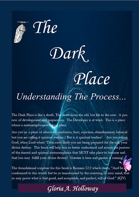 The Dark Place - Understanding the Process - Book cover for sale