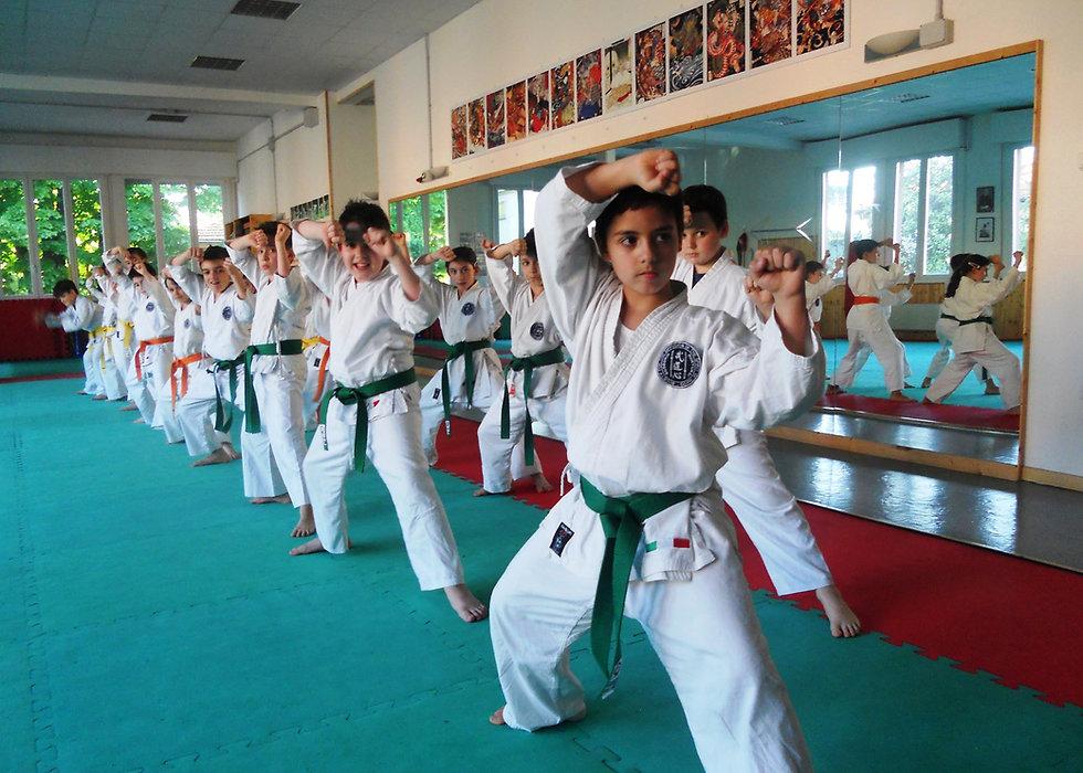 Karate Young 2.JPG