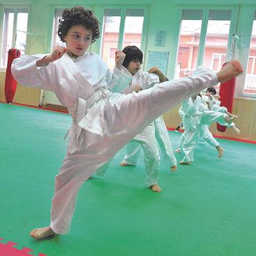 Karate Young 3.jpg