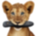 Telus Lion Cubs Photo Retouching