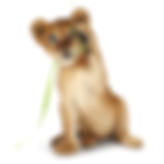 Telus Lion Cubs Advertising Retouching Reveal Video
