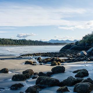 beach-4538078_960_720.jpg
