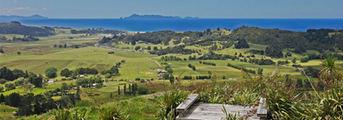 manunui-coastal-real-estate (1).jpg