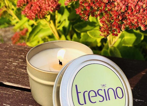 New Tresino scented Hot Apple Pie fall candle.