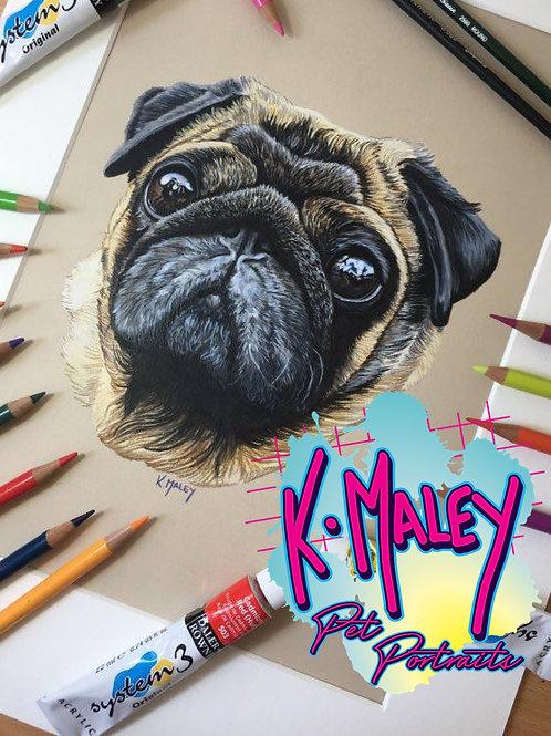 A3 Custom Pencil Pet Portrait