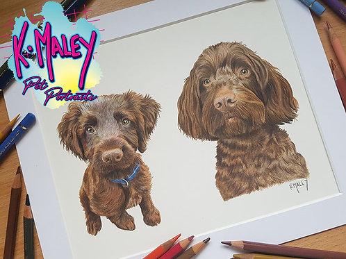 A4 DOUBLE Pencil Pet Portrait