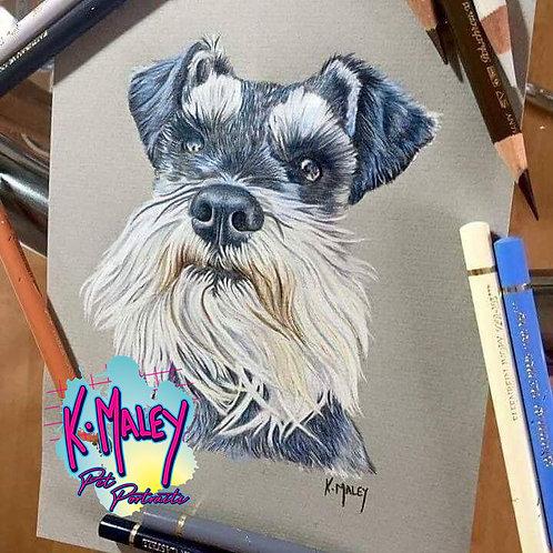 A4 Custom Pencil Pet Portrait