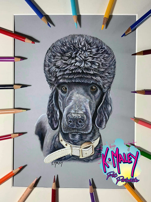 A3 Custom Pastel Pet Portrait