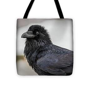 raven-4-16x16.jpg