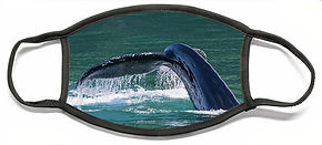 baby-whale-tail-david-kirby.jpg
